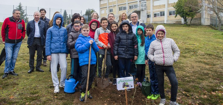A Deputación celebra os días da Árbore e da Auga plantando carballos en 86 colexios da provincia