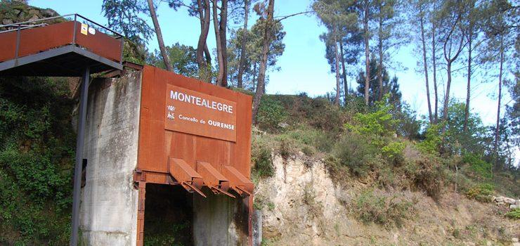 Montealegre pon en marcha unha campaña de doazón de plantas