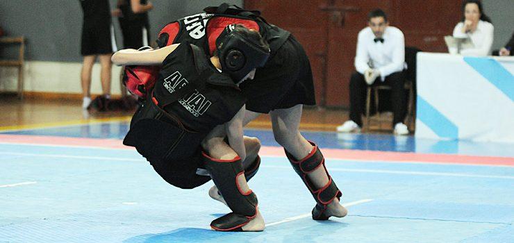 O Artai domina o galego de kung fu