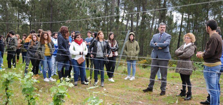 Alumnado do IES García Barbón participan nun obradoiro sobre cooperativismo