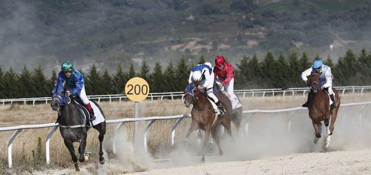Carreiras de cabalos no Día das Letras Galegas