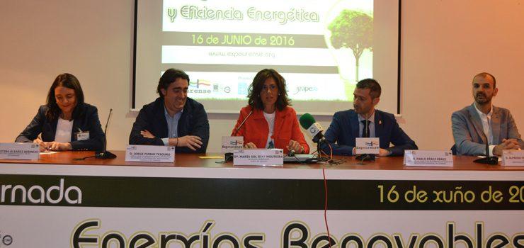 A biomasa, eixo do futuro enerxético de Galicia