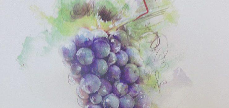 La XI Feria del Vino de Monterrei ya tiene cartel