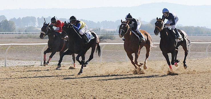 Cuarta xornada de carreiras de cabalos en Antela