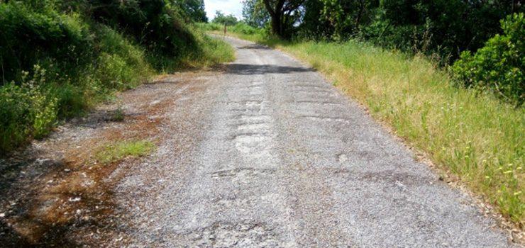 Ourense recibe 220.000 euros de Medio Rural para o arranxo de catro camiños en mal estado