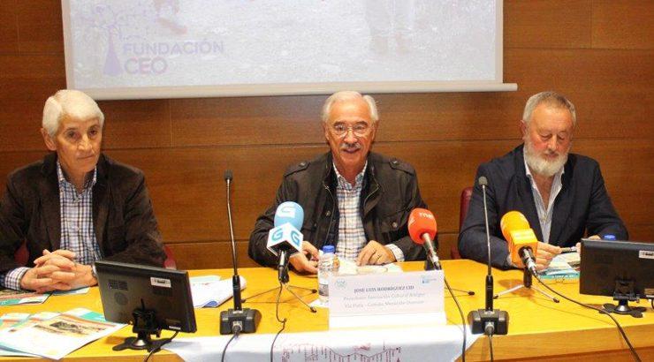 La Asociación Cultural Amigos Vía Plata celebra su 25 aniversario y la consolidación del Camino Mozárabe