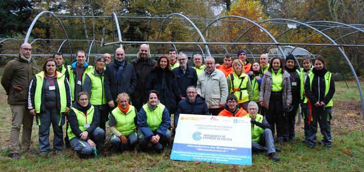 20 desempregados fórmanse en traballos forestais en Celanova