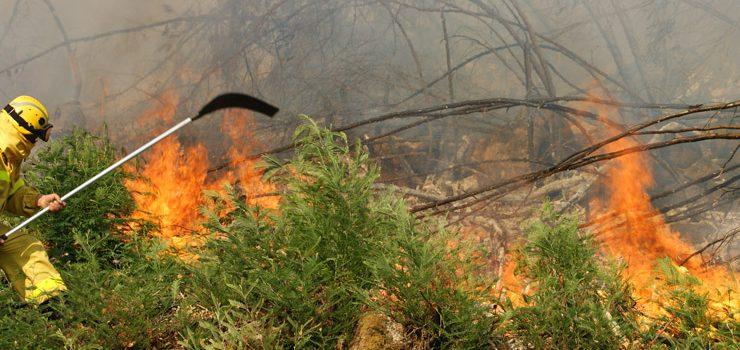 Detenido el supuesto autor del incendio que arrasó este verano 800 hectáreas en el Xurés