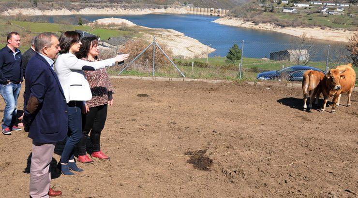 800.000 para a promoción do pastoreo no macizo central ourensán