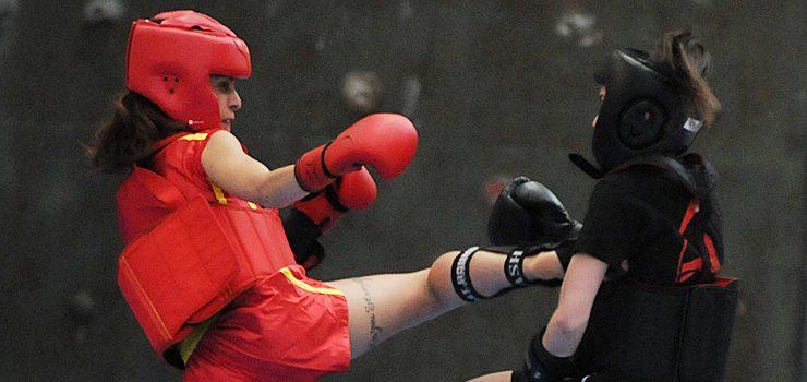 O Artai domina o kung fu moderno