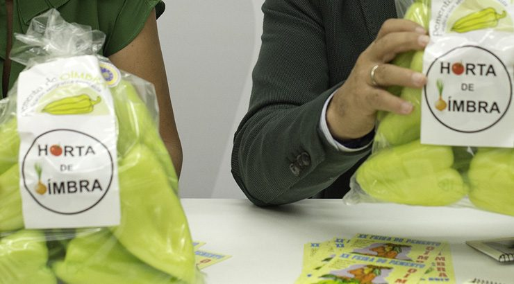 Oímbra celebra a 20ª edición da Festa do Pemento