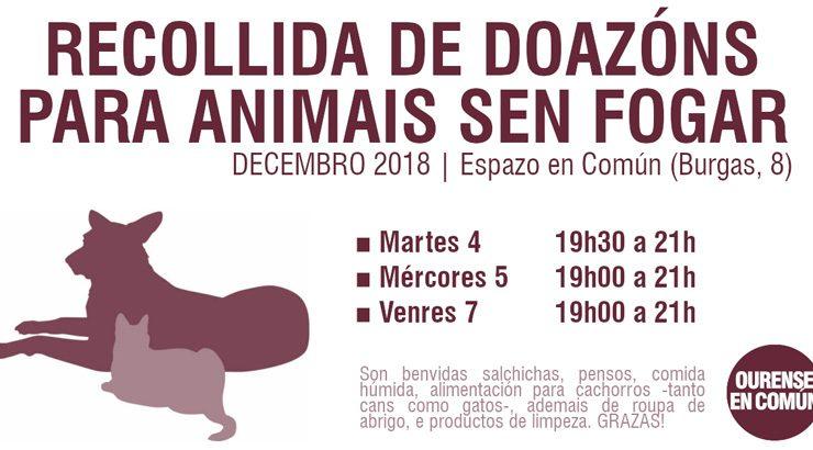 OUeC recolle alimentos para os animais sen fogar