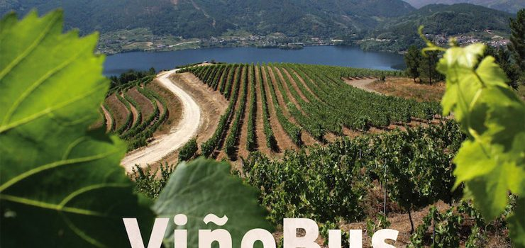 Tres rutas do ViñoBus percorrerán o Ribeiro en setembro