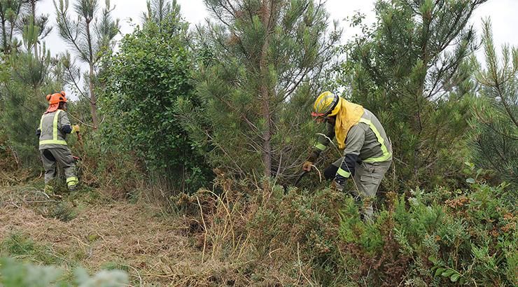 A Xunta reforza a loita contra os incendios e adopta medidas sanitarias