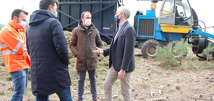 A Xunta apoia o impulso da biomasa