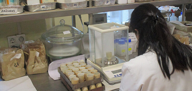 O laboratorio do Inorde colabora nas explotacións da pataca